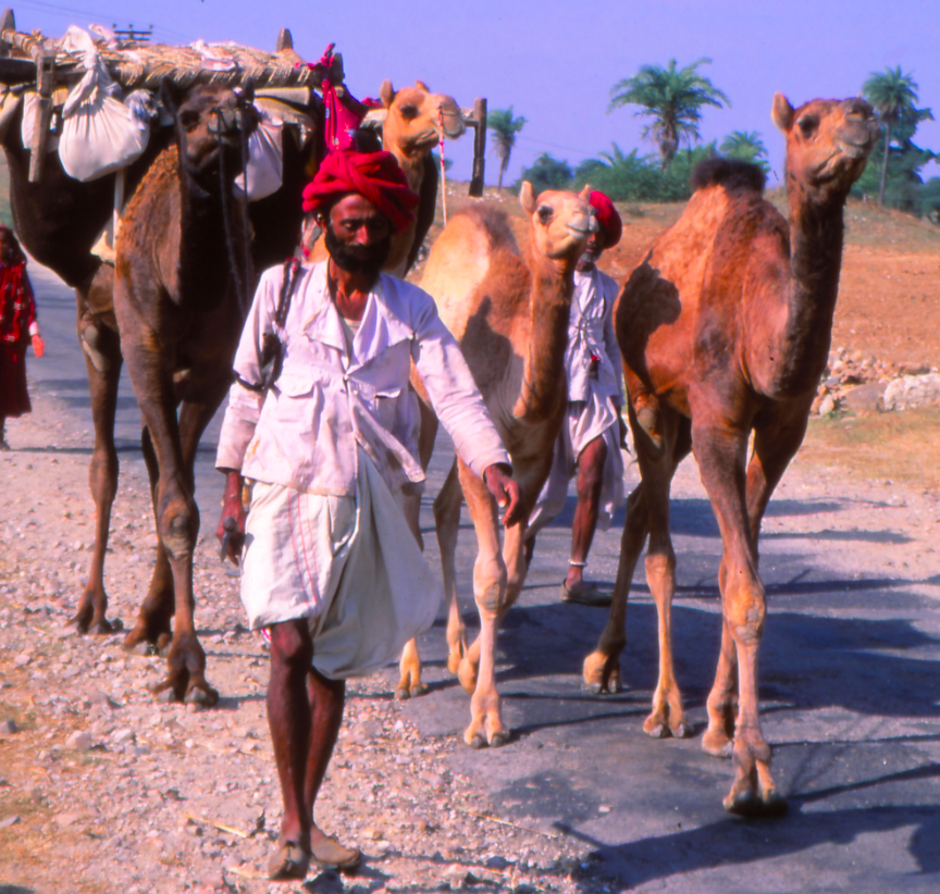 the constant traveler, gypsy in Rajasthan early 90ties