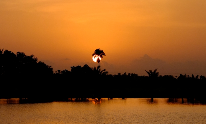 Sunset in the backwaters of Kerala