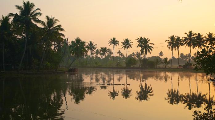 the amazing backwaters of Kerala